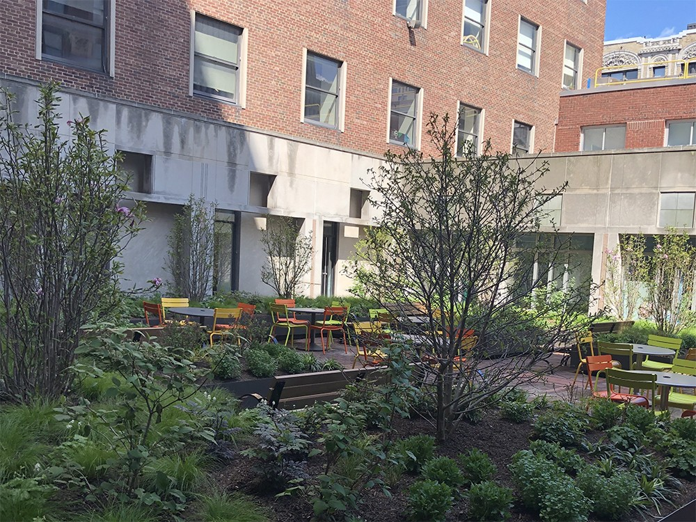 The Computer Science Courtyard, filled with trees and seating areas.
