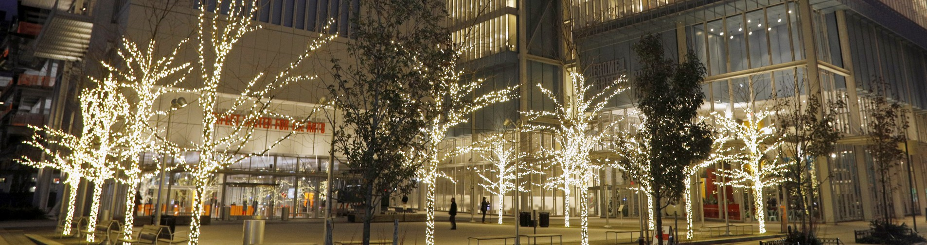 Trees around the Small Square at the Manhattanville campus, illuminated with lights