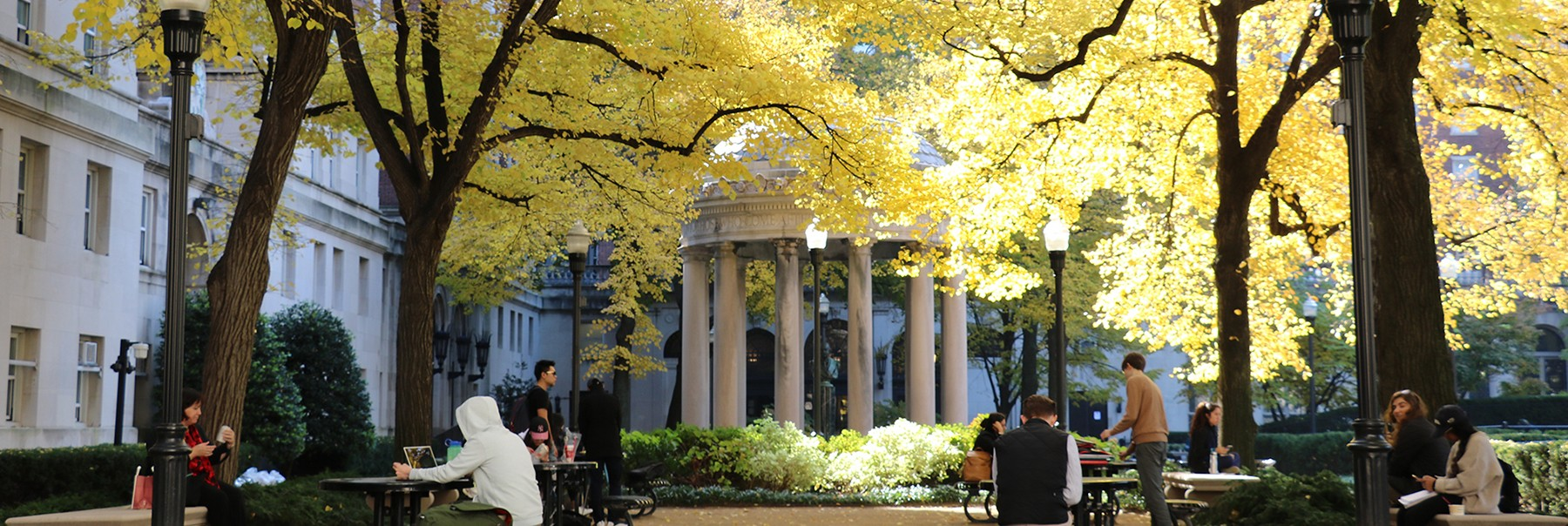 People sitting at tables in Van Am Quad, with trees with yellow leaves in the background