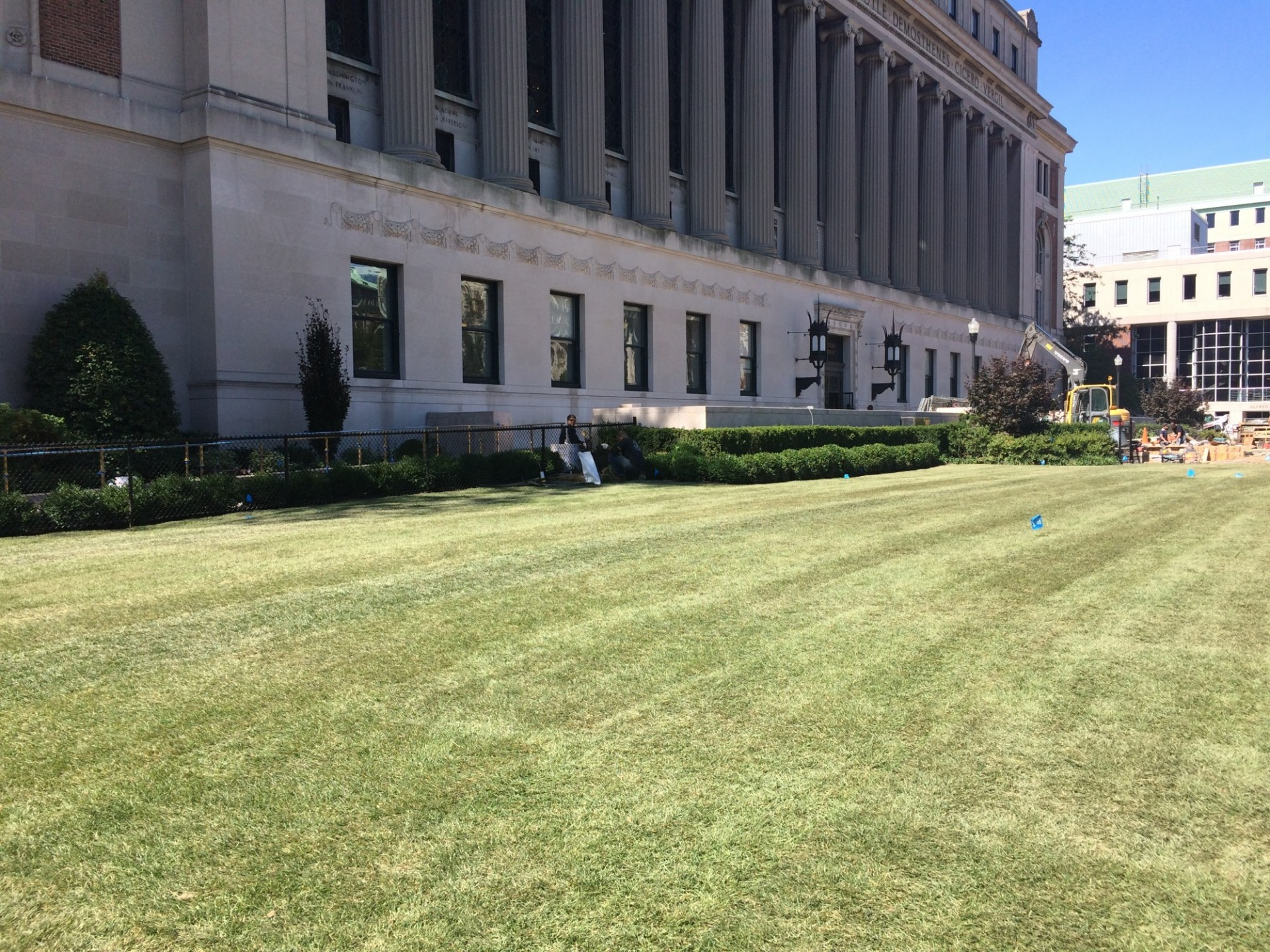 New sod at the southern portion of South Lawn East (Photo from September 1, 2017)