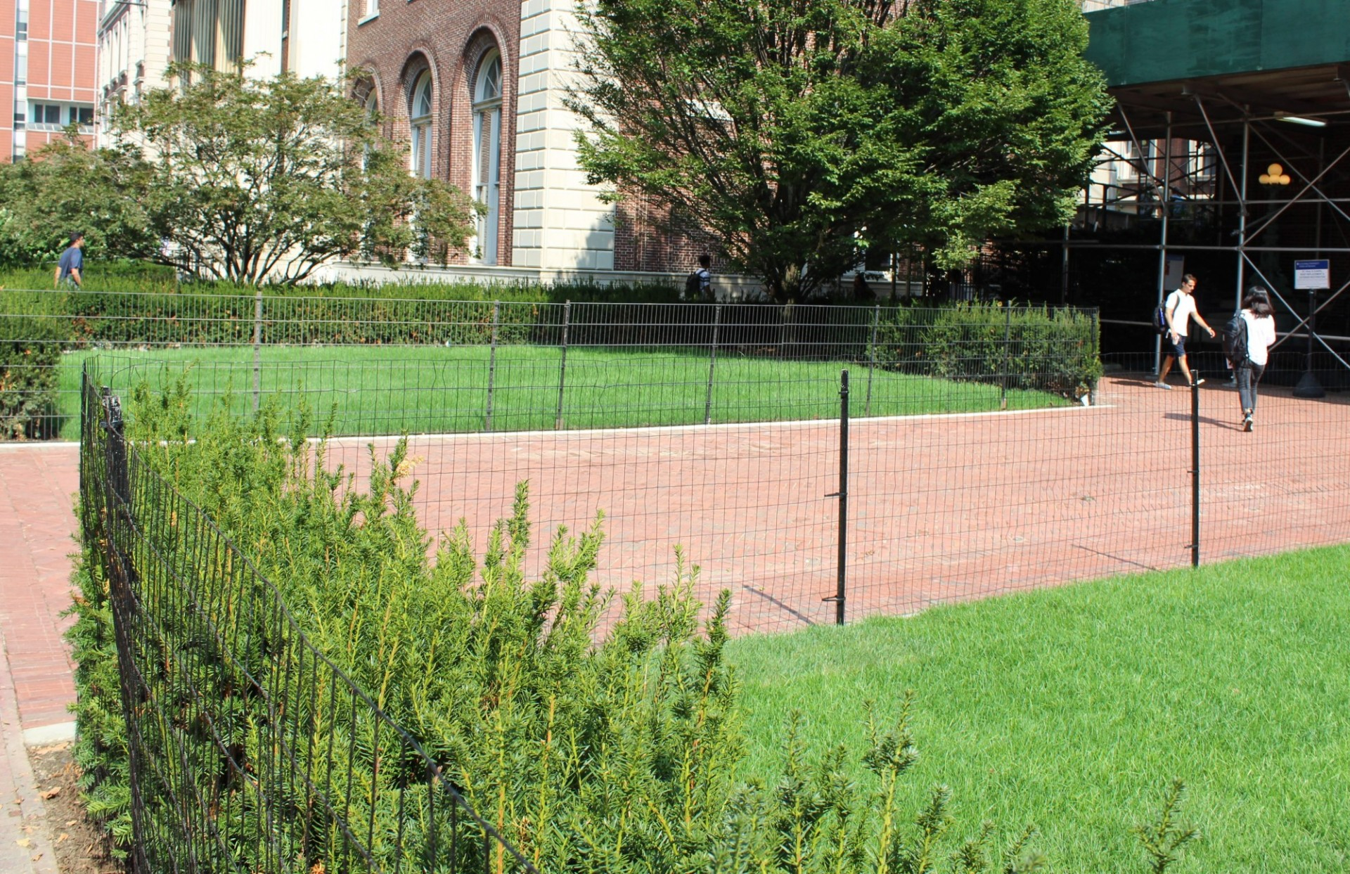 St. Paul's Chapel lawn: Perimeter shrubs around the lawns in front were removed to create more open and welcoming lawn spaces and building entrances